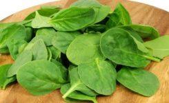 Nitratos en verduras: Síndrome del bebé azul.