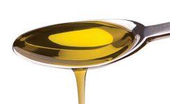 ¿Cúal es el mejor aceite para freir?