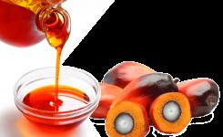 Coherencia con el aceite de palma