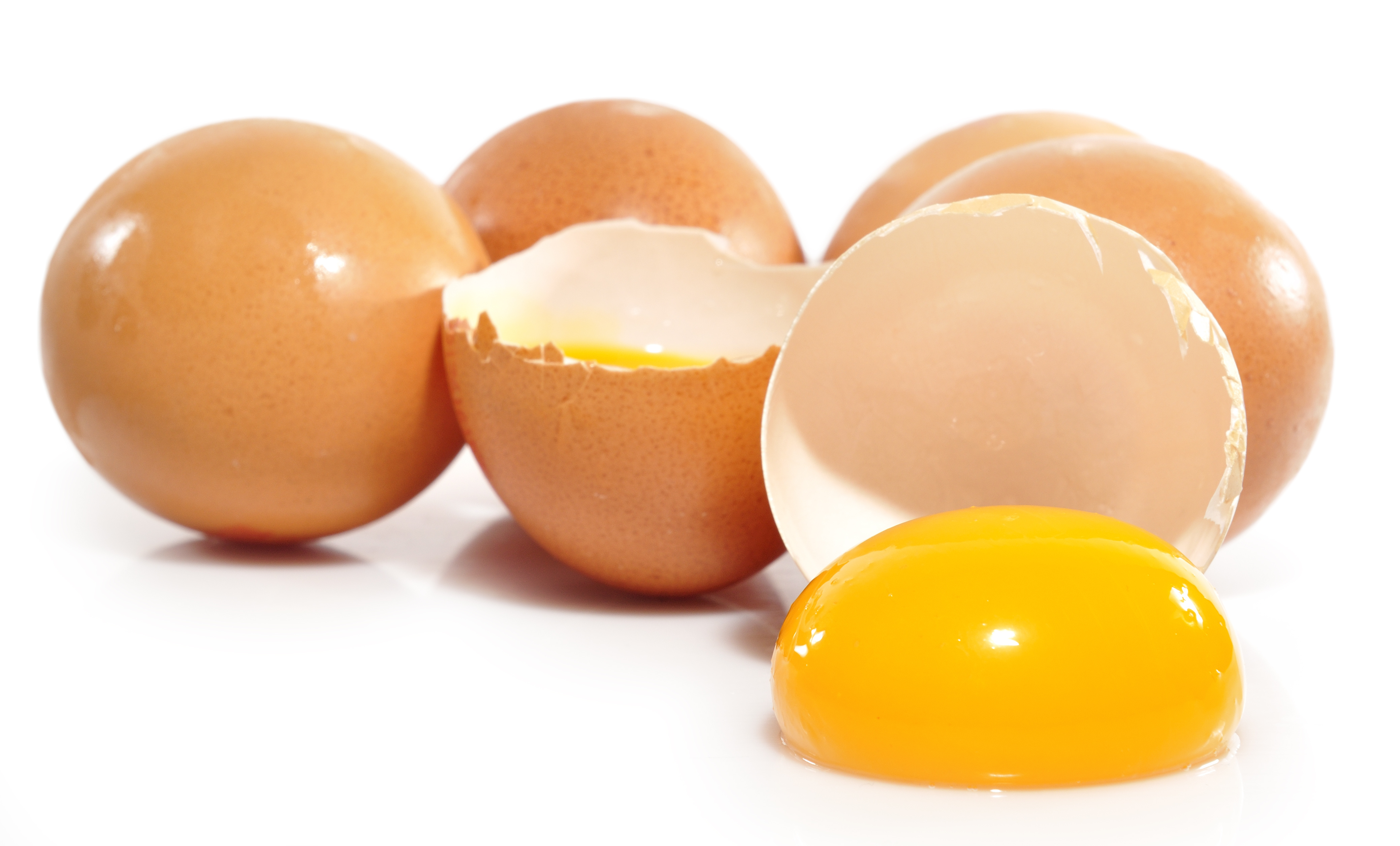 ¡Manda huevos! (contaminados con fipronil) (parte 2)